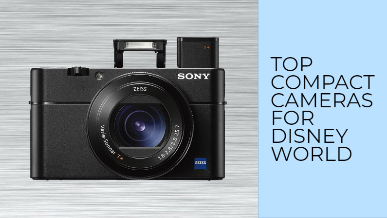 compact point shoot camera disney world