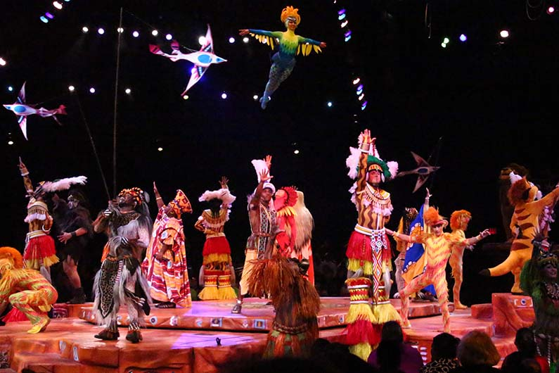animal kingdom festival of the lion king