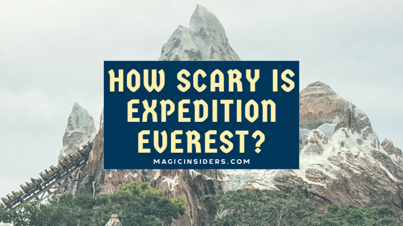 How Scary is Expedition Everest?