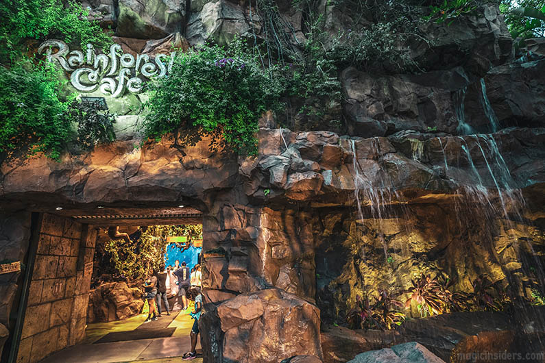 Animal Kingdom Secret Entrance