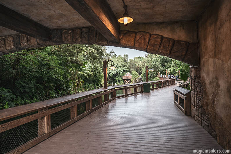 Animal Kingdom Secret Pathway to Pandora
