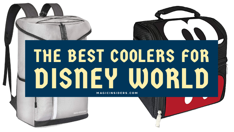 Best Coolers for Disney World