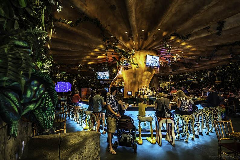 Safari Bar Rainforest Cafe Animal Kingdom